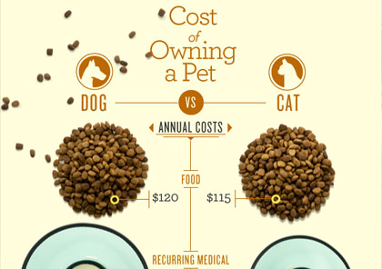 1361733454_cost-of-owinin-a-pet-infographic_s