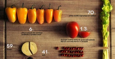 vegetarianism-in-numbers_infographic