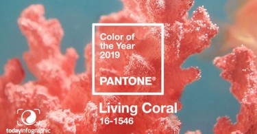 color-of-the-year-2019