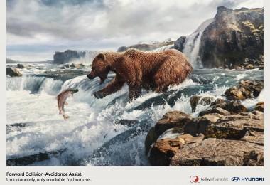 hyundai_humans_bear_resized